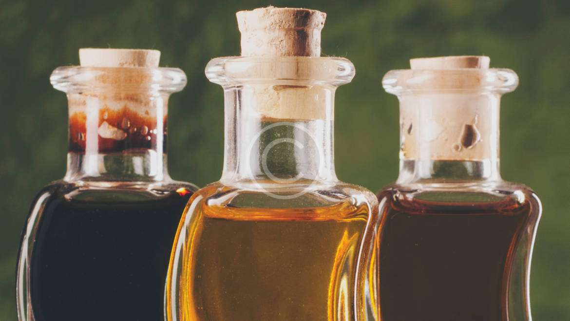 Finding The Best Olive Oils in The World
